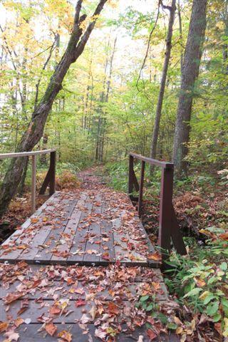 Quiddity Trail, Charleston Lake Provincial Park