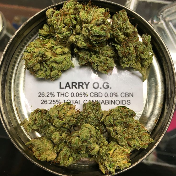 Larry OG is backkkkkk ! ✨ Do not miss out on it. Come get your 5G 8th today !  #legalize #thc #high #weedstagram #instaweed #cannabiscommunity #medicalmarijuana #mmj #420 #topshelflife #indica #topquality #tested #weedporn #girlswhosmoke