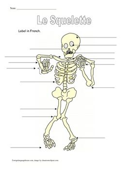 Have some Halloween vocabulary fun in French class. Label the body parts on a skeleton. An optional word bank handout is also included....