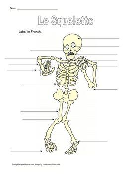 a skeleton skeletons and halloween on pinterest. Black Bedroom Furniture Sets. Home Design Ideas
