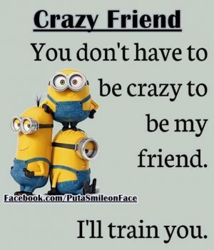 Crazy Friend (120 pieces)