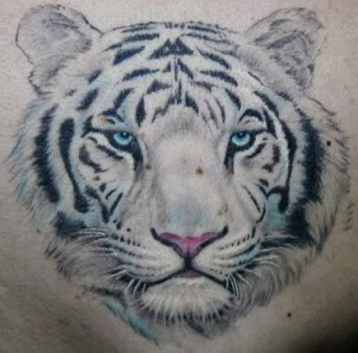 White tiger face with blue eyes | Tattoo ideas? | Pinterest