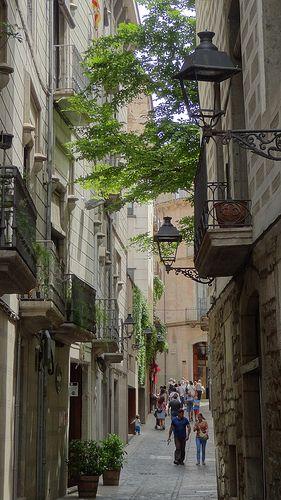 Girona temps de flors, Catalunya