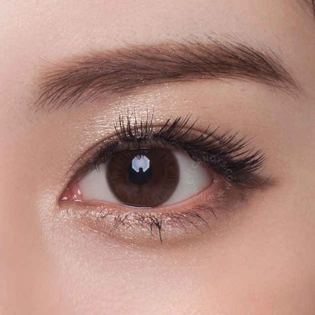 neo monet brown circle lenses with simple enlargement rim these