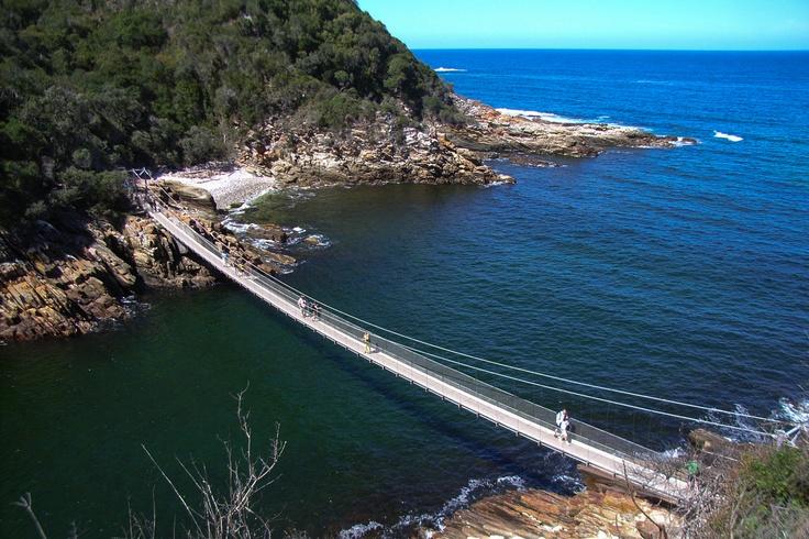Hang bridge South Africa