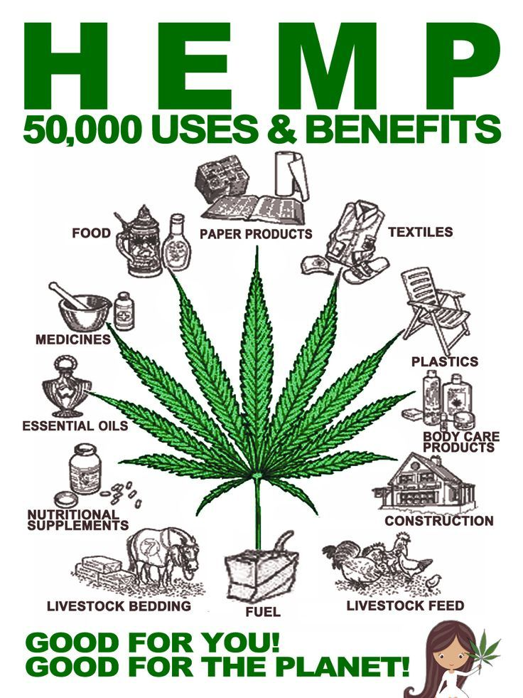 Hemp has deep roots and grows in different types of soil to increases microbial the content. Hemp can be grown as a raw mate… | HEMP... YEARS & YEARS | Pinte…
