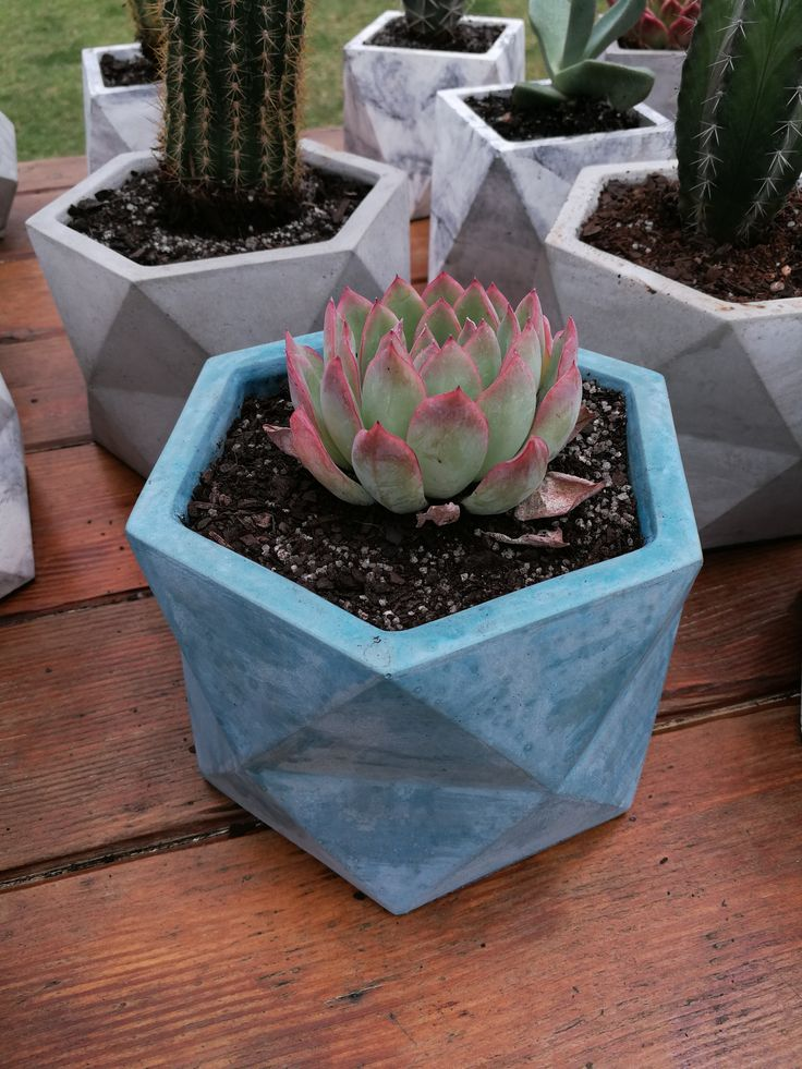 Blue Hexagonal prism concrete planter