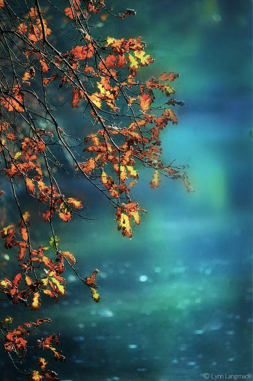 pin von mihaela tanase auf autumn beauty herbst sch ne hintern und sch ne bilder. Black Bedroom Furniture Sets. Home Design Ideas
