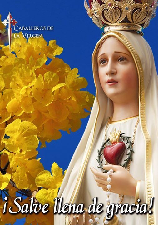Oremos! Dios te salve María llena eres de gracia; el Señor es contigo; bendita Tú eres entre todas las mujeres y bendito es el fruto de tu vientre Jesús. Santa María Madre de Dios ruega por nosotros pecadores ahora y en la hora de nuestra muerte. Amén.