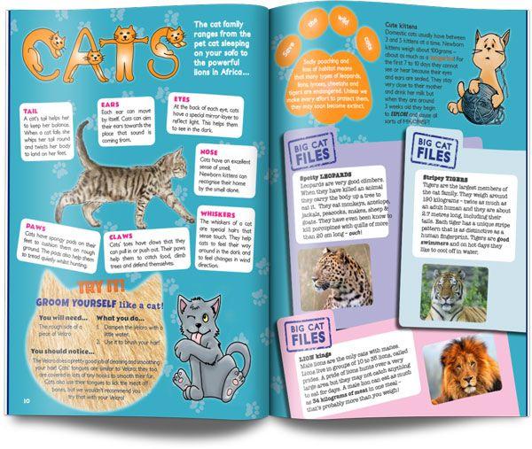 cat layout UK children's science magazine for kids