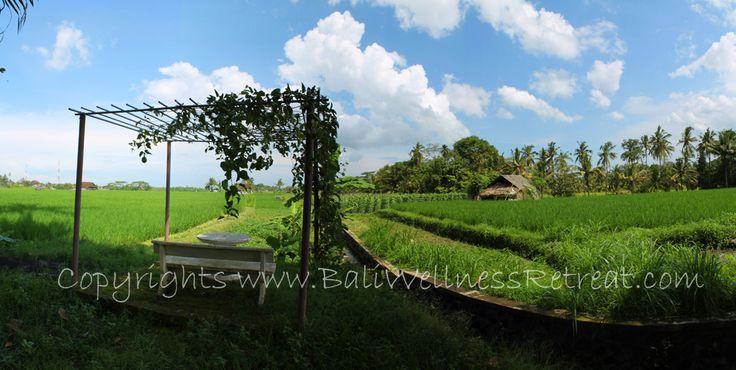 http://baliwellnessretreat.com/Spiritual-Retreat-Center-in-South-Bali/
