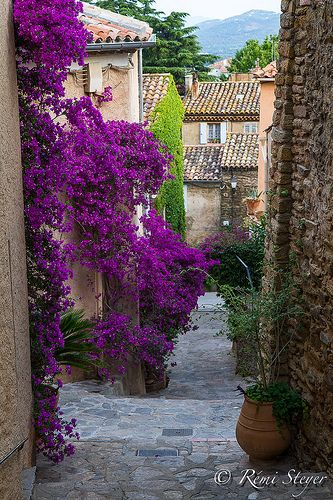 Beautiful Streets of Bormes les Mimosas, Provence