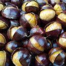 10 beneficios de comer castañas ecoagricultor.com