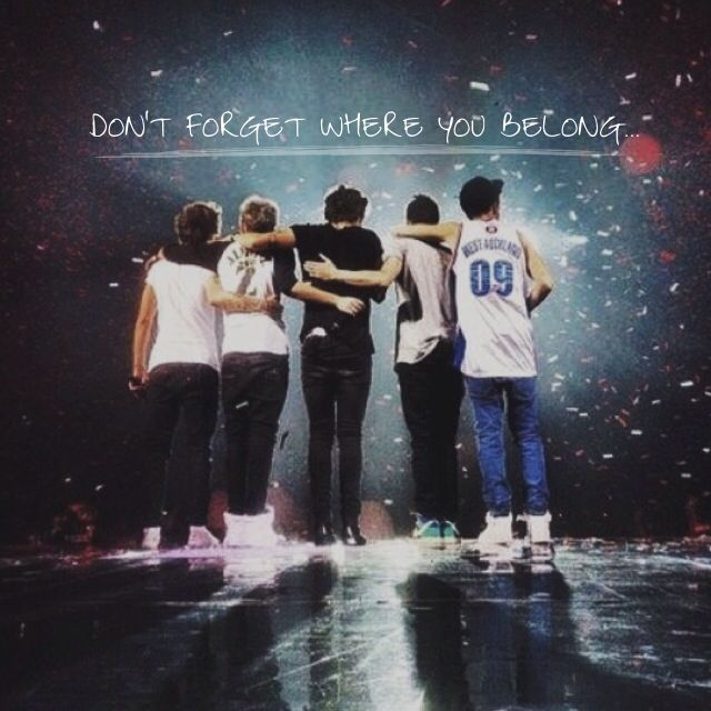 Song Lyrics - Don't Forget Where You Belong (One Direction ...