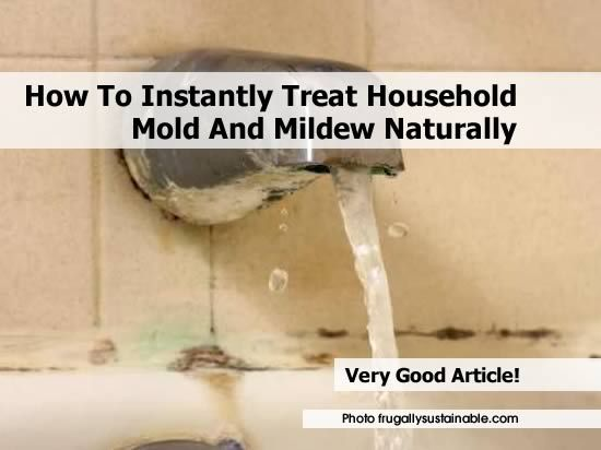 How To Instantly Treat Household Mold And Mildew Naturally - http://www.hometipsworld.com/how-to-instantly-treat-household-mold-and-mildew-naturally.html