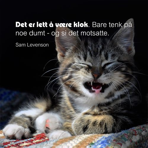 -Sam Levenson