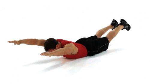 Vous cherchez des exercices efficaces pour muscler vos lombaires ? Découvrez des mouvements simples pour travailler les muscles du bas du dos.