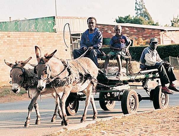 Soweto Township - transport options