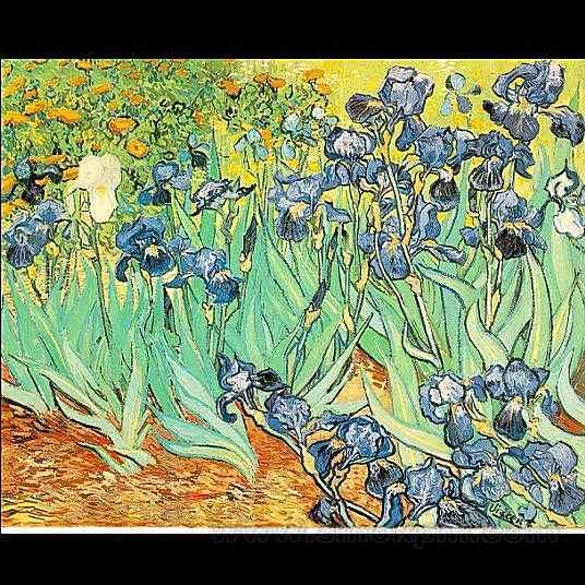 vincent van gogh essay conclusion Vincent van gogh a well known name by most and a highly reputable figure amongst painters and other artists, he showed his true talent and passion for the arts in his short career, a career which only lasted ten years (preble 117.