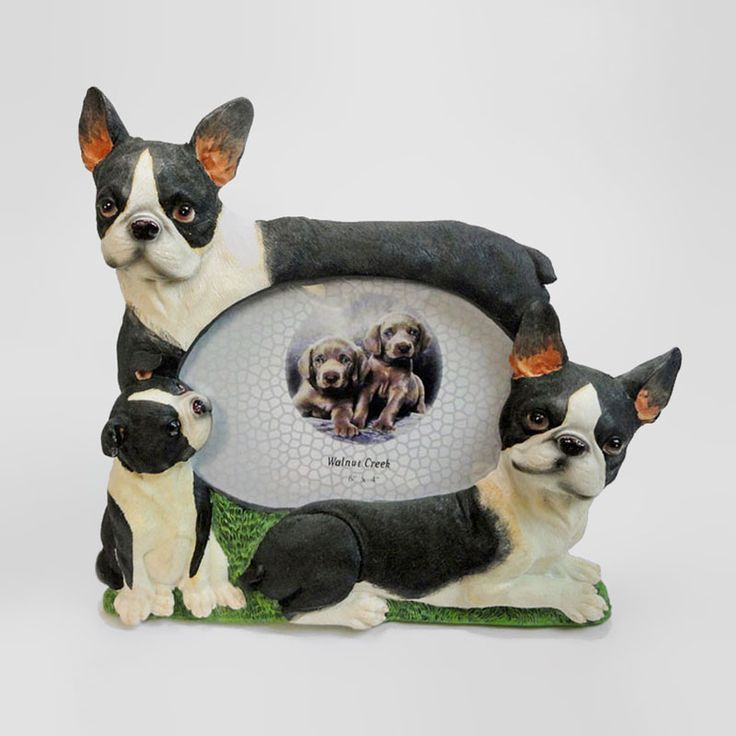 Boston Terrier Dog and Puppies Figurines Polyresin Picture Photo Frame - PFD671L - Boston Terrier dog and puppies polyresin dog figurines table or desk photo frame with easel back. Holds one 6 x 4 picture. Great gift for your dog lover friend or yourself - FOR SALE at www.ClaudiasBargains.com