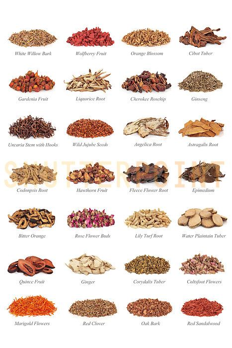 Chinese Medicinal Herbs. Health comes in many forms. Rarely in pill form!