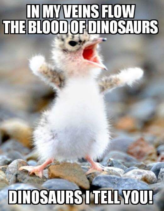 The blood of dinosaurs flows in my veins...
