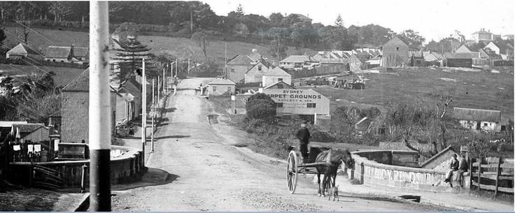 New South Head Rd, Rushcutters Bay,in eastern Sydney in the 1870s. •State Library of NSW•