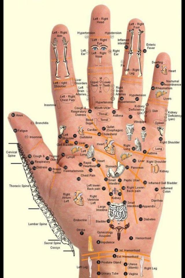 *reflexology. the hand.