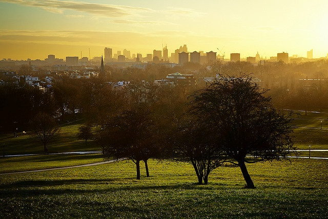 View from Primrose Hill, London