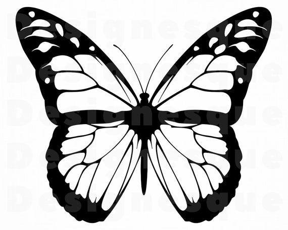 Monarch Butterfly Outline Svg Butterfly Svg Monarch Etsy In 2021 Butterfly Outline Butterfly Clip Art Butterflies Svg