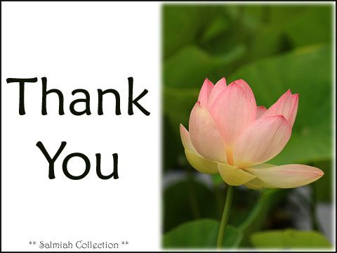 Thank You Card 36