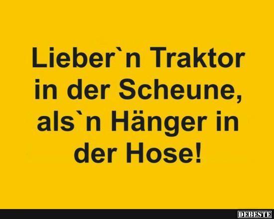 ScheuNe Kitzler
