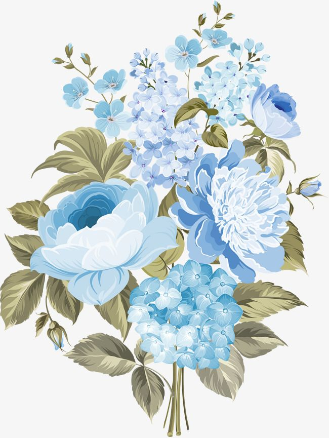 Flowers In Blue Flowers Blue Flowers In Clusters Flower Png Transparent Clipart Image And Psd File For Free Download Flower Illustration Flower Drawing Flower Crown Drawing