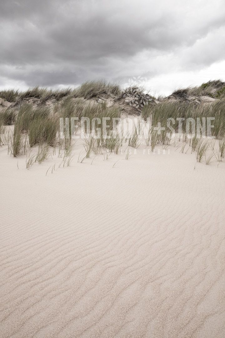 DUNES  Fine Art Photographic Print via Hedgerow+Stone. Click on the image to see more!