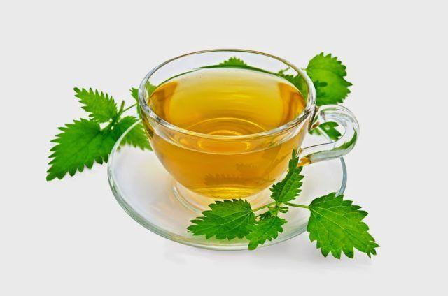 Bigstock herbal tea with Nettles 40690807.jpg