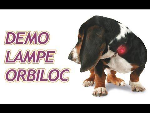 """VIDEO YouTube - Lampe de sécurité """"Orbiloc Safety"""" pour chiens"""