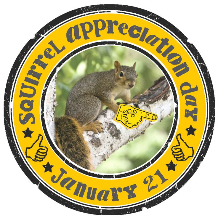 Squirrel-Appreciation-Day...excuse me? This is a thing??! I <3 squirrels!
