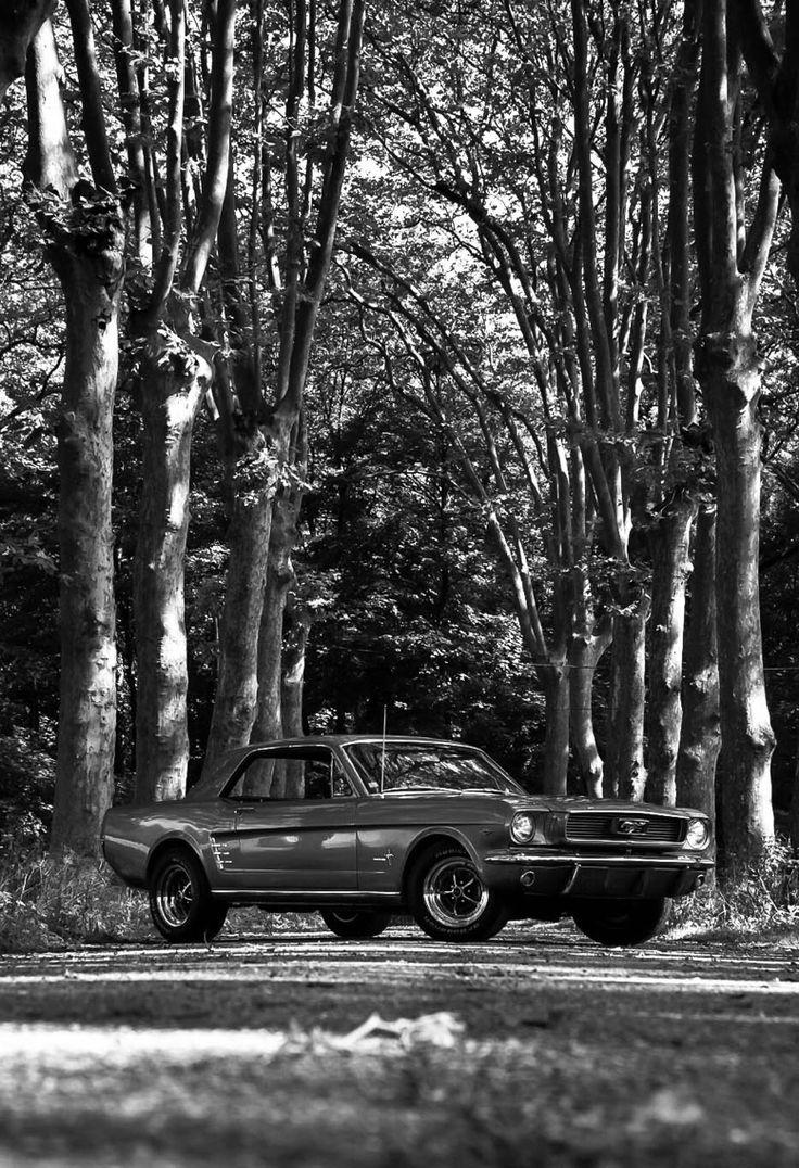 66' Mustang