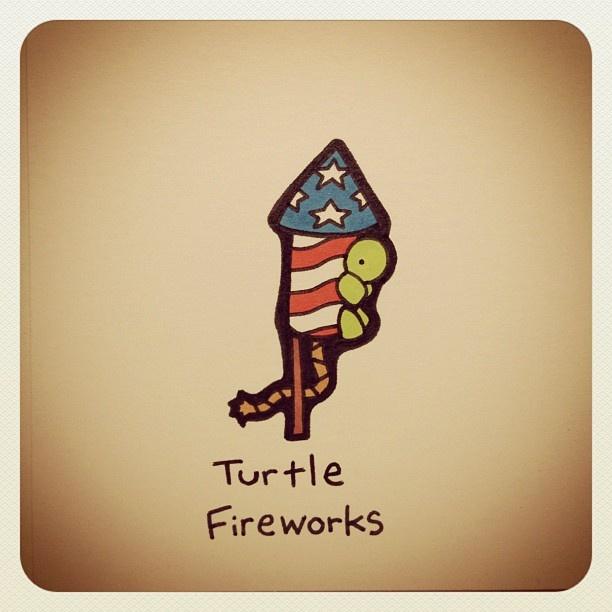 Turtle Fireworks #july4th #july4 #merica - @turtlewayne- #webstagram