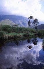 Greyton - Western Cape - South Africa