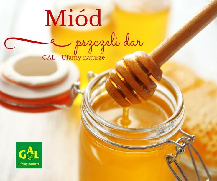 MIODY GAL // Z pasiek położonych w najczystszych rejonach Polski. http://www.gal.com.pl/produkty/miody/miod-mleczko-pszczele.html