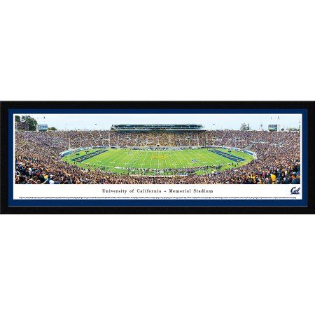 California Golden Bears Football - 50 Yard Line - Blakeway Panoramas Ncaa College Print with Select Frame and Single Mat