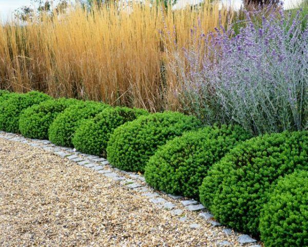 Pin by kaytlyn wismayer on mon maison exterior garden for Garden designs for zone 5