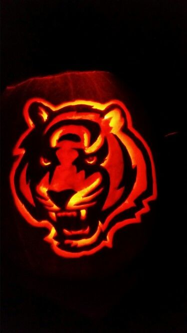 Cincinnati bengals pumpkin carvings pinterest
