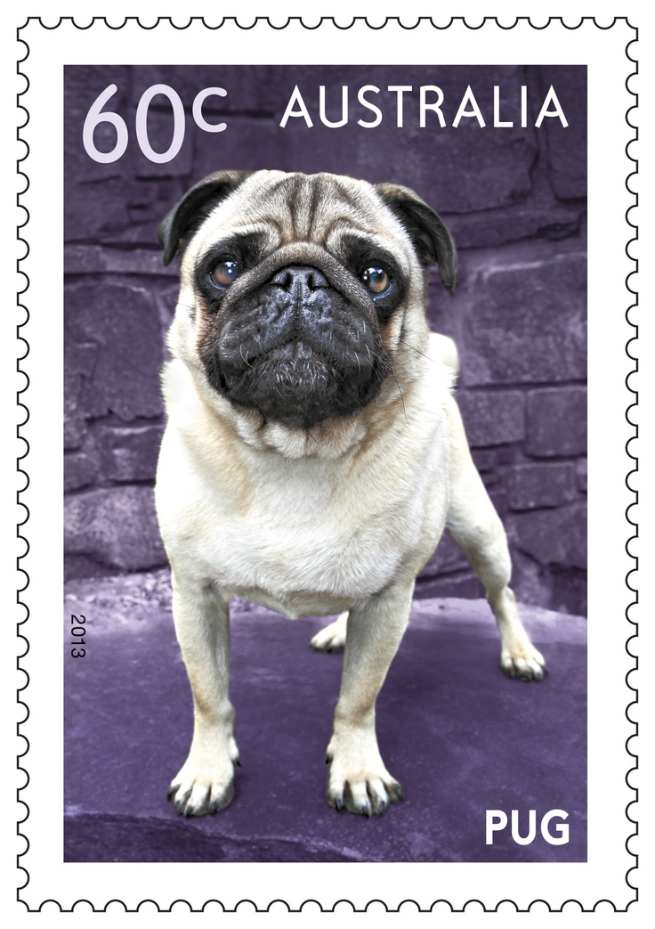 Peter the Pug on our Top Dogs #stamps #dogs.