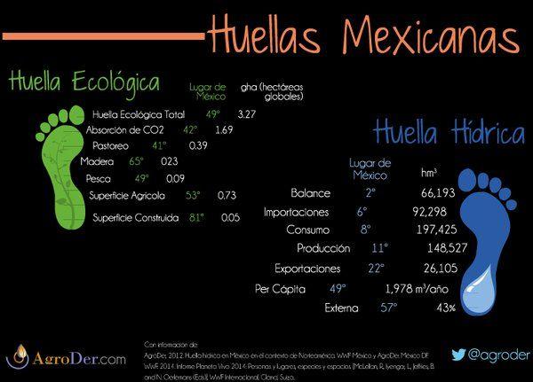 No siempre es bueno dejar #huella. Sobre todo si son #HuellaHídrica y #HuellaEcológica. ¿Haces algo por reducirlas? vía AgroDer (@AgroDer) | Twitter