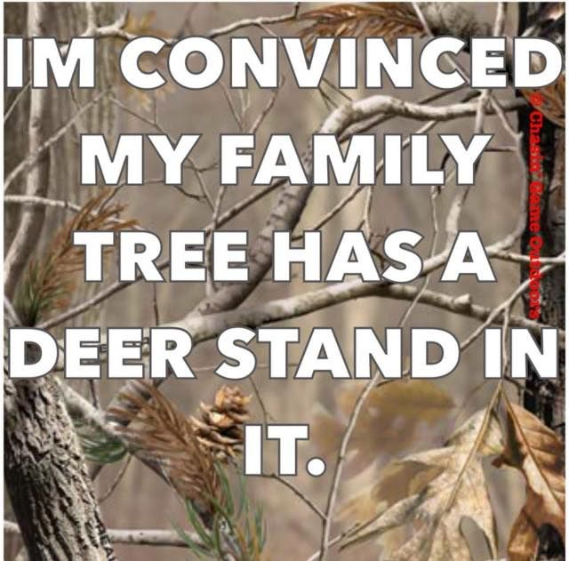 I'm convinced my family tree has a deer stand in it.