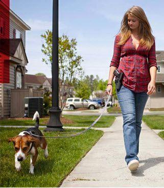 Afbeeldingsresultaat voor texas walking dog with gun