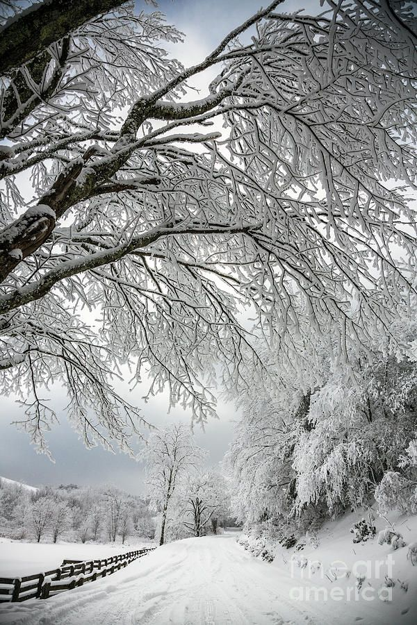 ✯ After The Snow Storm * REMINDS ME OF GROWING UP IN MICHIGAN AND GOING SNOWMOBILING** GREAT TIMES