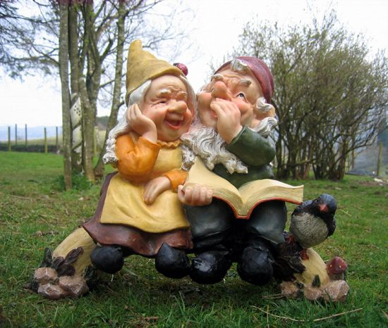 Funny Gnomes: The 25+ Best Funny Gnomes Ideas On Pinterest